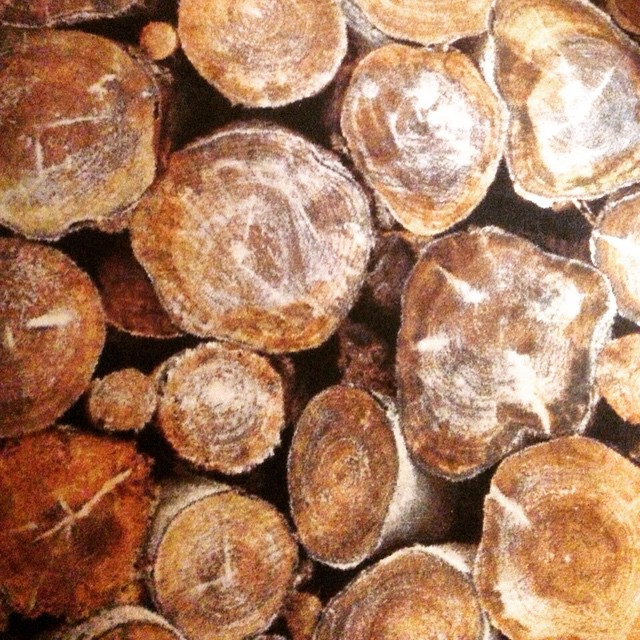 #logs#detail#pattern#cool#inspiration