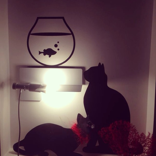 #maison13#lifestyle#tonight#black#cat#red#designerdrivein