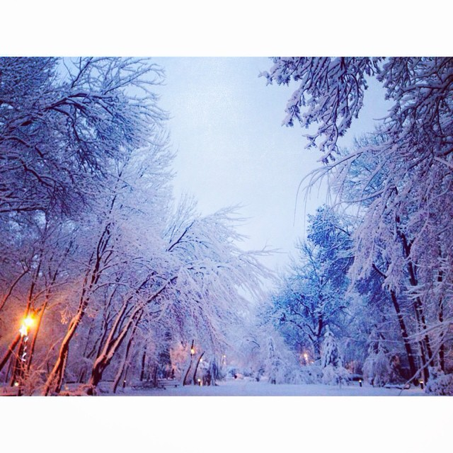 #cold #bucharest #frozencity# allwhite# snow# december
